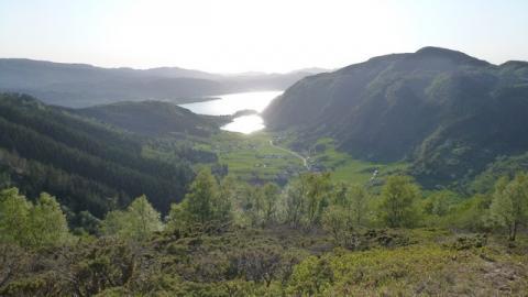 Utsikt over fjord og fjell